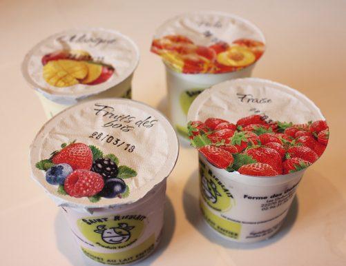 Yaourts multi-fruits Saint-Rieulait